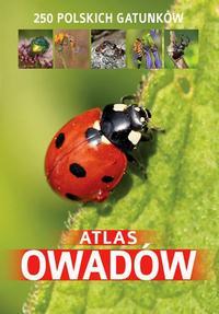 Atlas owadów. 250 polskich gatunków