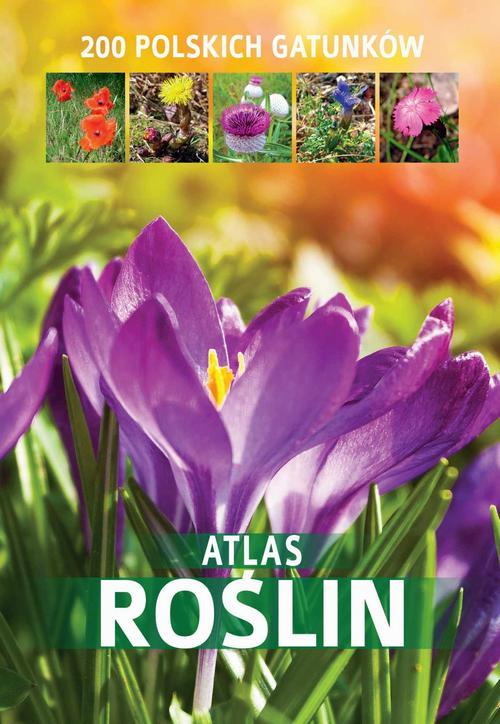 Atlas roślin. 200 polskich gatunków