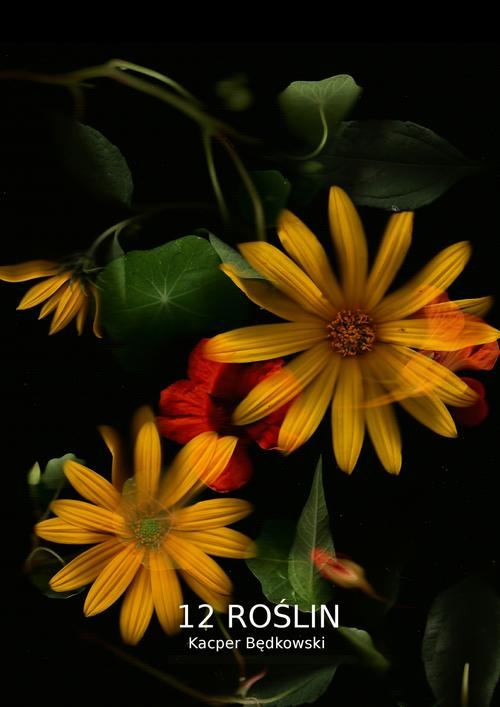 12 Roślin